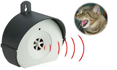 R pulsif pour chat toutes les soultions possibles pour carter les chats - Repulsif pour chats dans les jardins ...